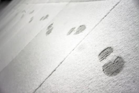 週五早上雪剛開始下時