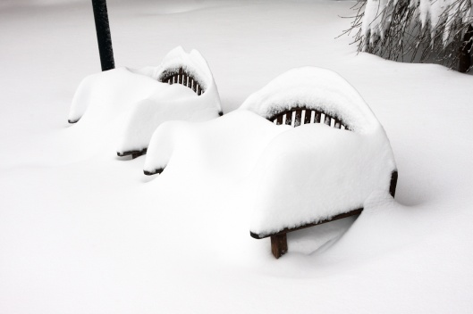 公園板凳上雪多到滿出來