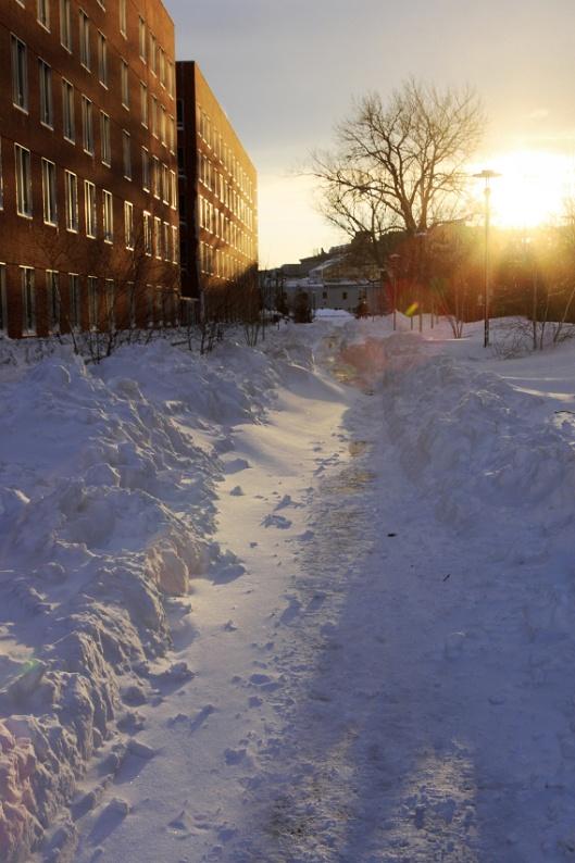 夕陽中人行道的積雪