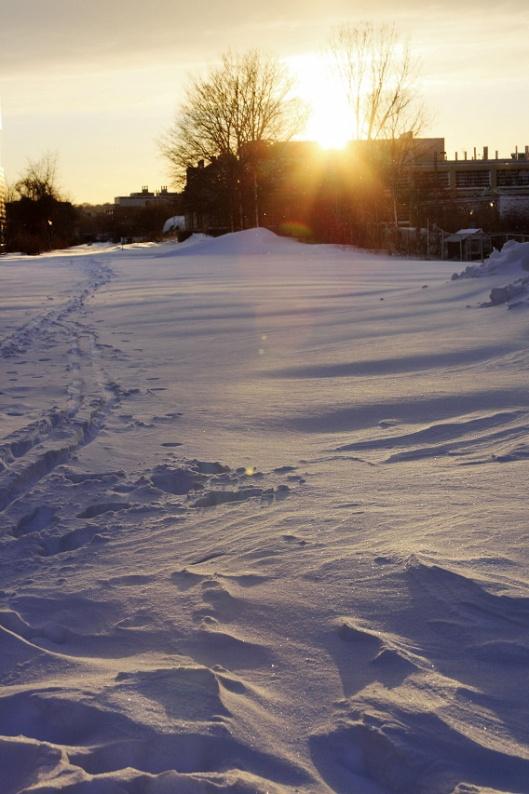 經過MIT校園的鐵路完全被積雪覆蓋