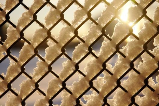 運動場柵欄上的積雪