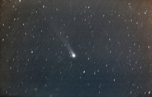 11/30的洛夫喬伊彗星。點擊可看Flickr大圖。