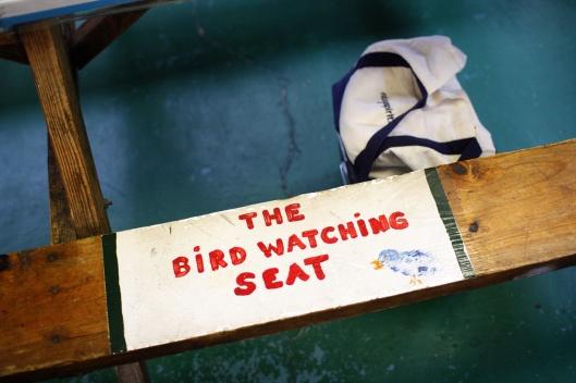 長椅特別劃出一格賞鳥用座位? XD