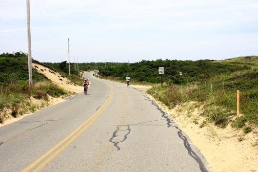 沙丘中起伏的道路