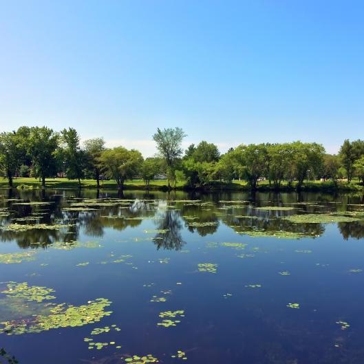 比賽經過風景優美的Ames Pond (賽後補照)