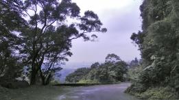 山路訓練--佛陀世界大陡坡(下坡方向)